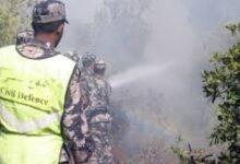 صورة إخماد حريق أتى على عشرات الدونمات في إربد