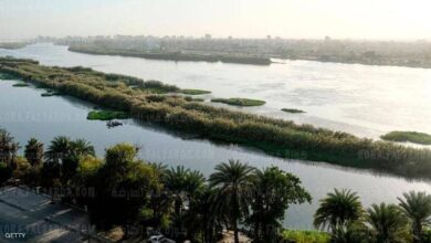 صورة مصر تستعد لفيضان بالنيل لم يحدث منذ 100 عام
